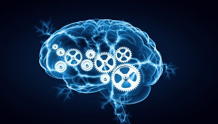 How to Increase Your Brain Power | Health & Fitness